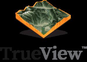 TrueView™